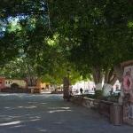 San Ignacio plaza